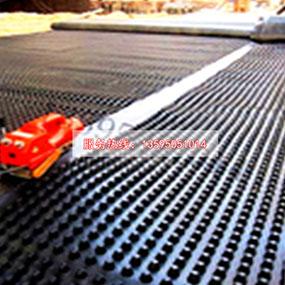 贵州贵阳排水板厂家直销_贵州导水防水_蓄排水板