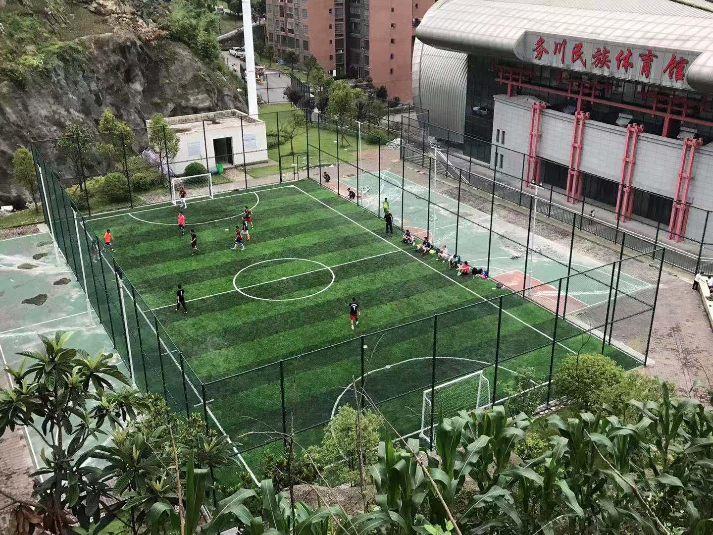人造草坪足球场 人造草坪