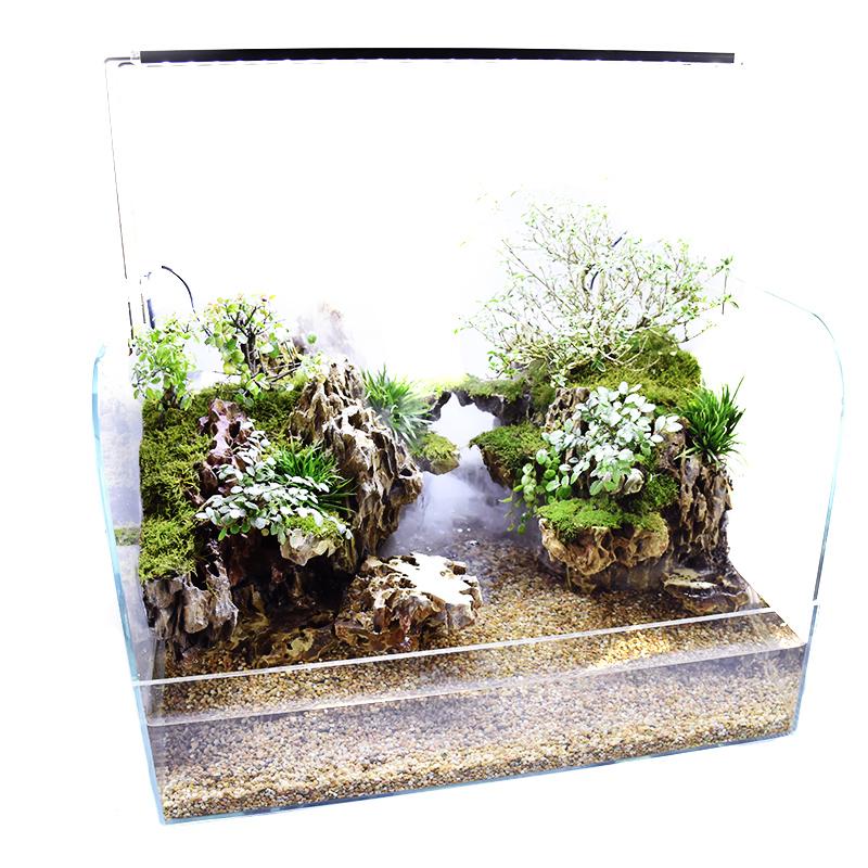 陕西西安水陆缸造景套餐植物材料客厅超白缸两栖生态缸乌龟