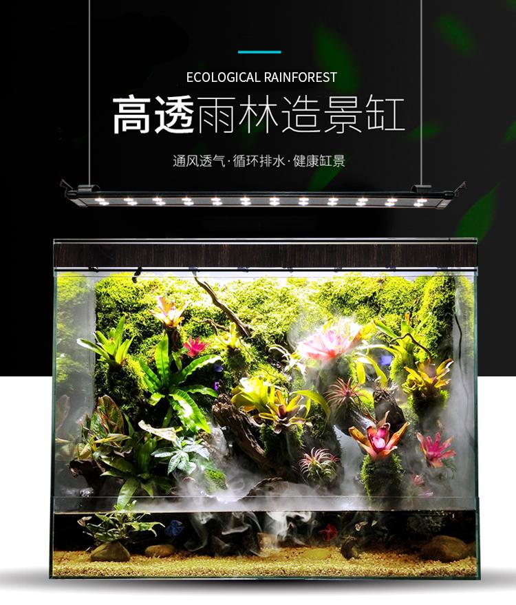 西安热带雨淋缸水陆两栖类动物缸水草缸