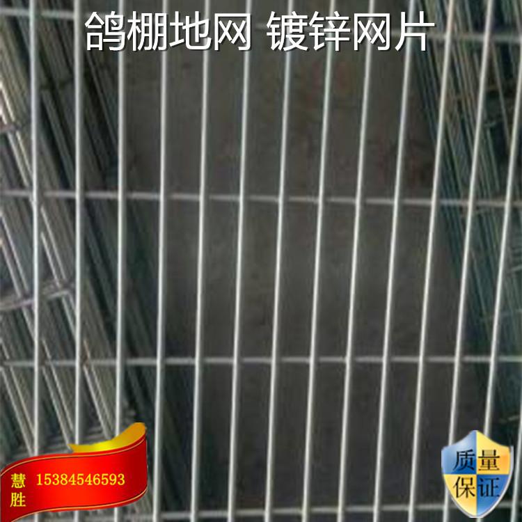 【现货网片】西安慧胜厂家直销信鸽棚地网承重好围网美观坚