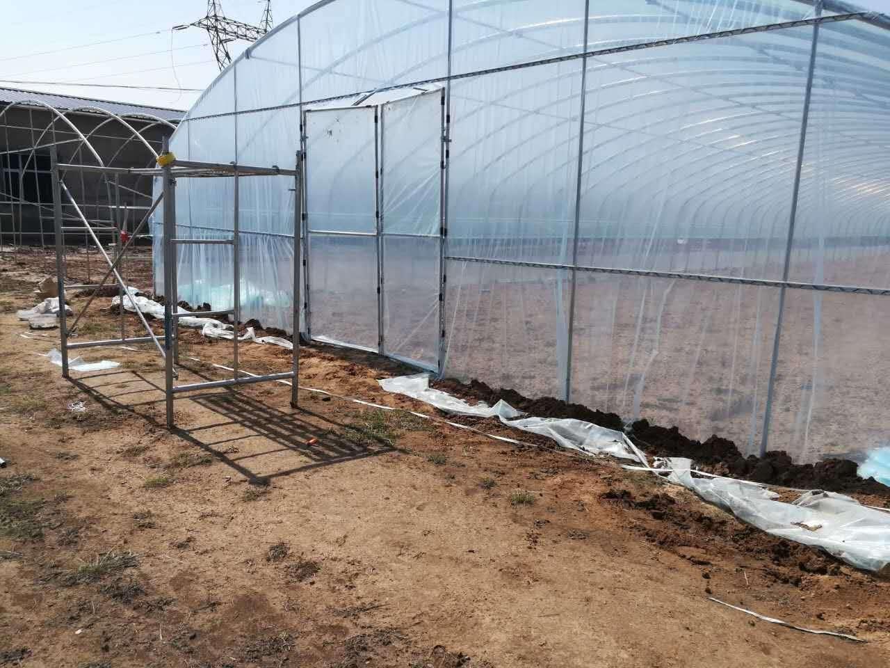 定西温室大棚 定西蔬菜大棚生产厂家 甘肃发迪专业温室大棚厂家直销