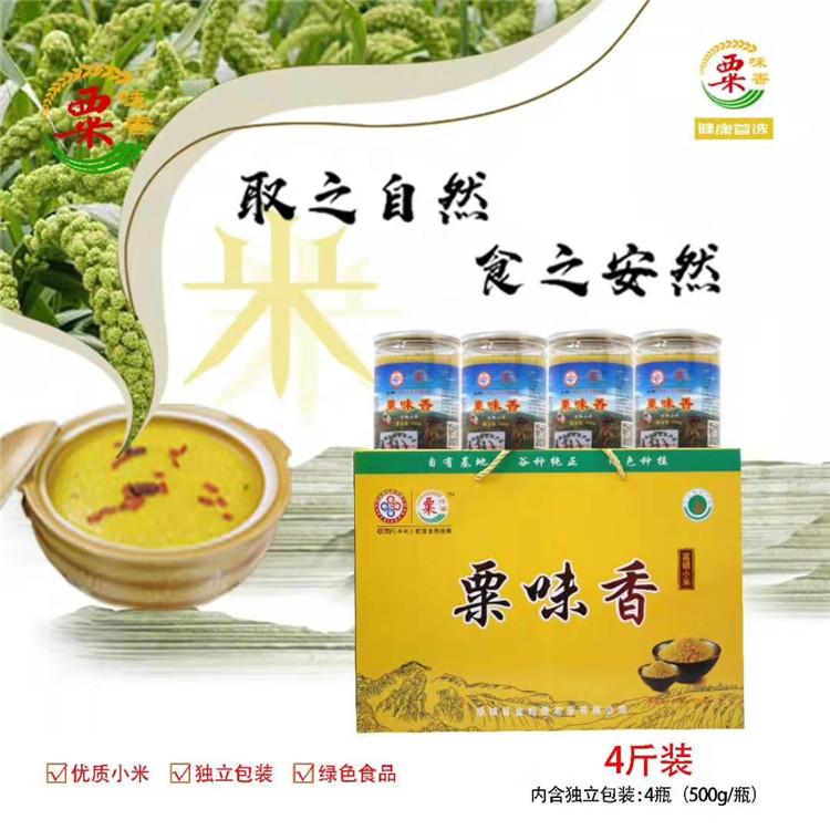 陕西黄小米批发厂家 天然绿色五谷杂粮小米