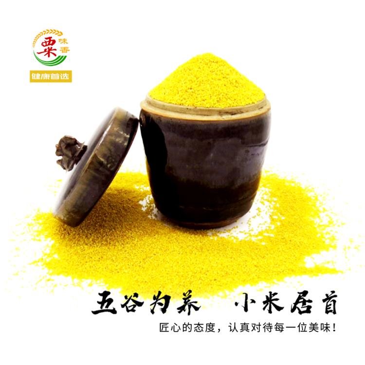 精品特级黄小米 五谷杂粮小米