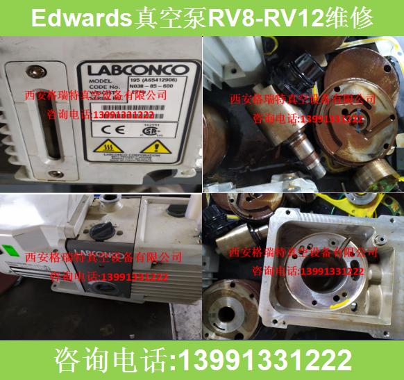 RV8真空泵 陕西真空泵厂家