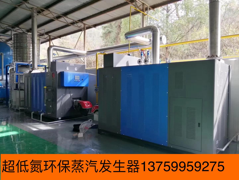 水洗厂用锅炉蒸汽发生器 免办证锅炉 燃气蒸汽发生器 生物质能颗粒蒸汽发生器