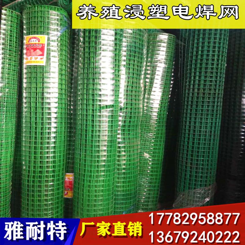 陕西浸塑电焊网 西安浸塑电焊网片 浸塑电焊网生产厂家 金属板网 铁丝网