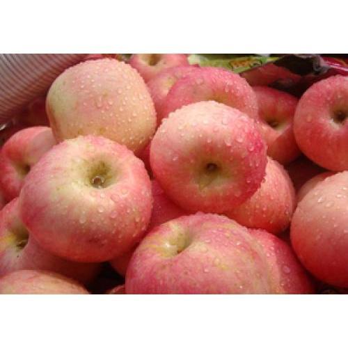 果农自销苹果 苹果大量批发