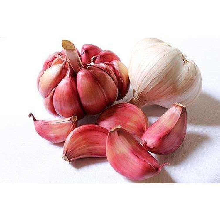 贵州2020年新鲜干大红蒜头干蒜5斤装新蒜10农家自种红紫白皮大蒜香