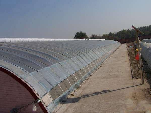 陕西鼎泰鑫  日光温室大棚  日光温室工程建设 西瓜甜瓜种植适用