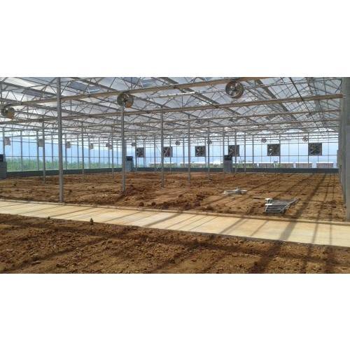 陕西文洛式型智能玻璃温室 西安文洛式智能温室大棚建设