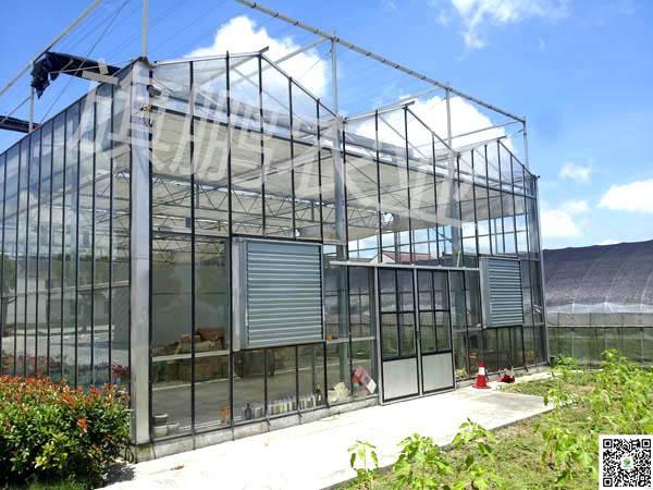 陕西鼎泰鑫连栋温室 玻璃温室大棚骨架 生态温室连栋大棚