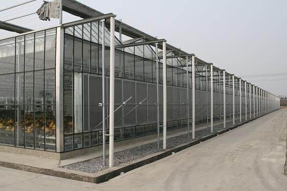 旗鹏温室 温室大棚 物联网控制系统 智慧种植温室