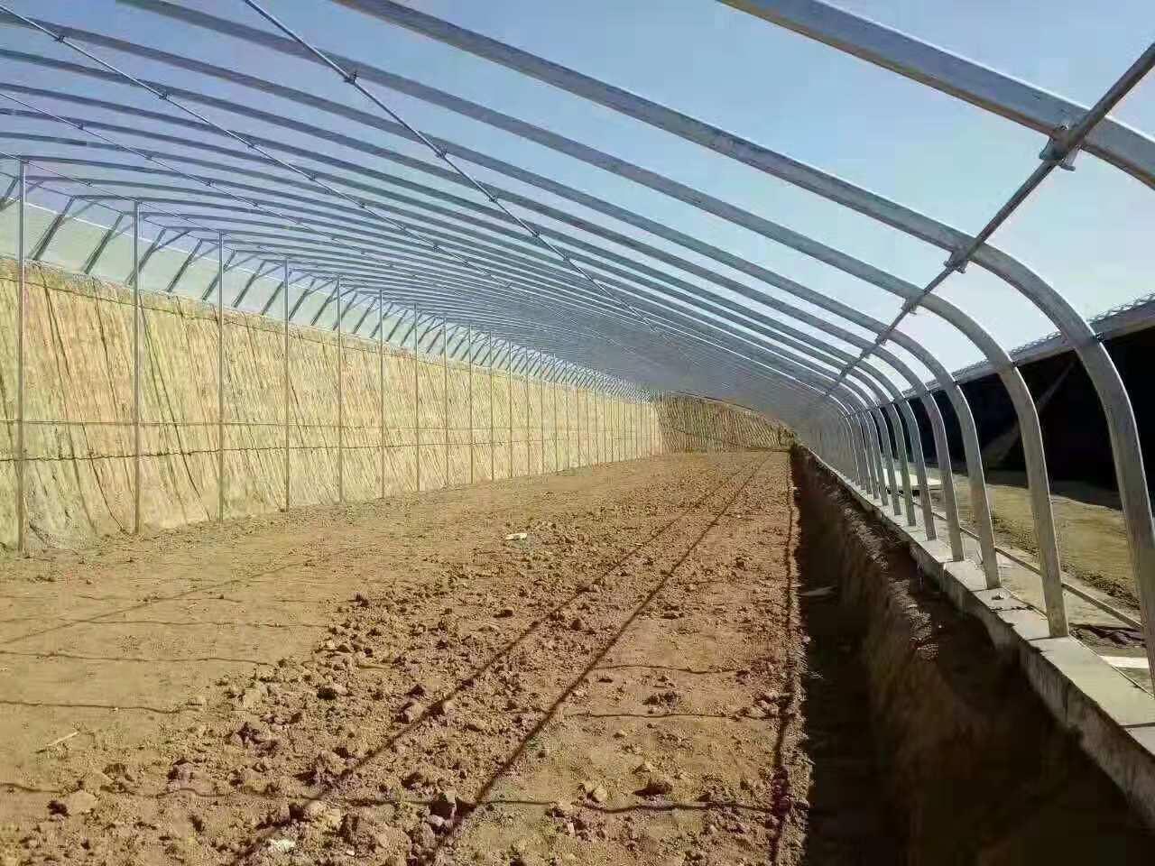 人工调节温室大棚各类大棚承建商 农业大棚公司 旗鹏温室