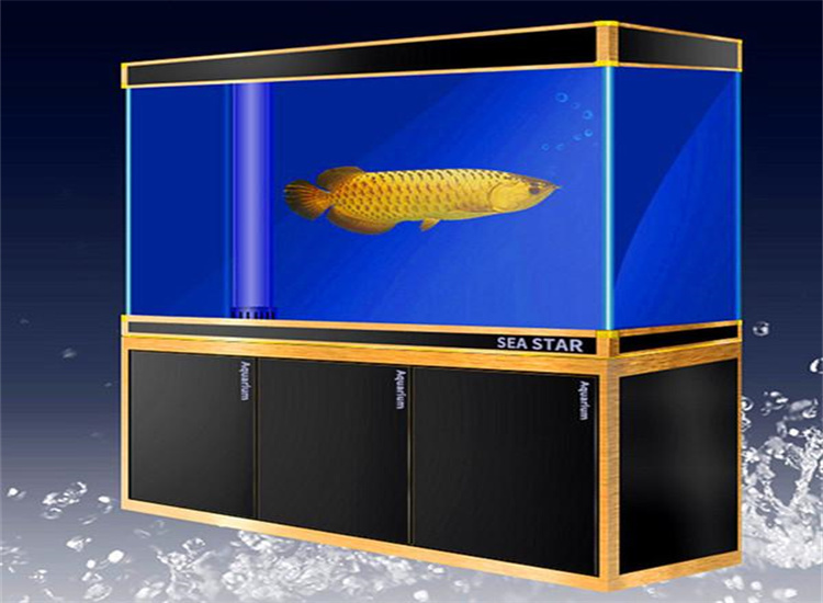 贵州二层热弯鱼缸批发 买鱼缸找君源鸿盛