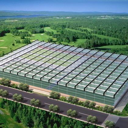 宝鸡智能温室规划 设计  加工  安装一站式服务