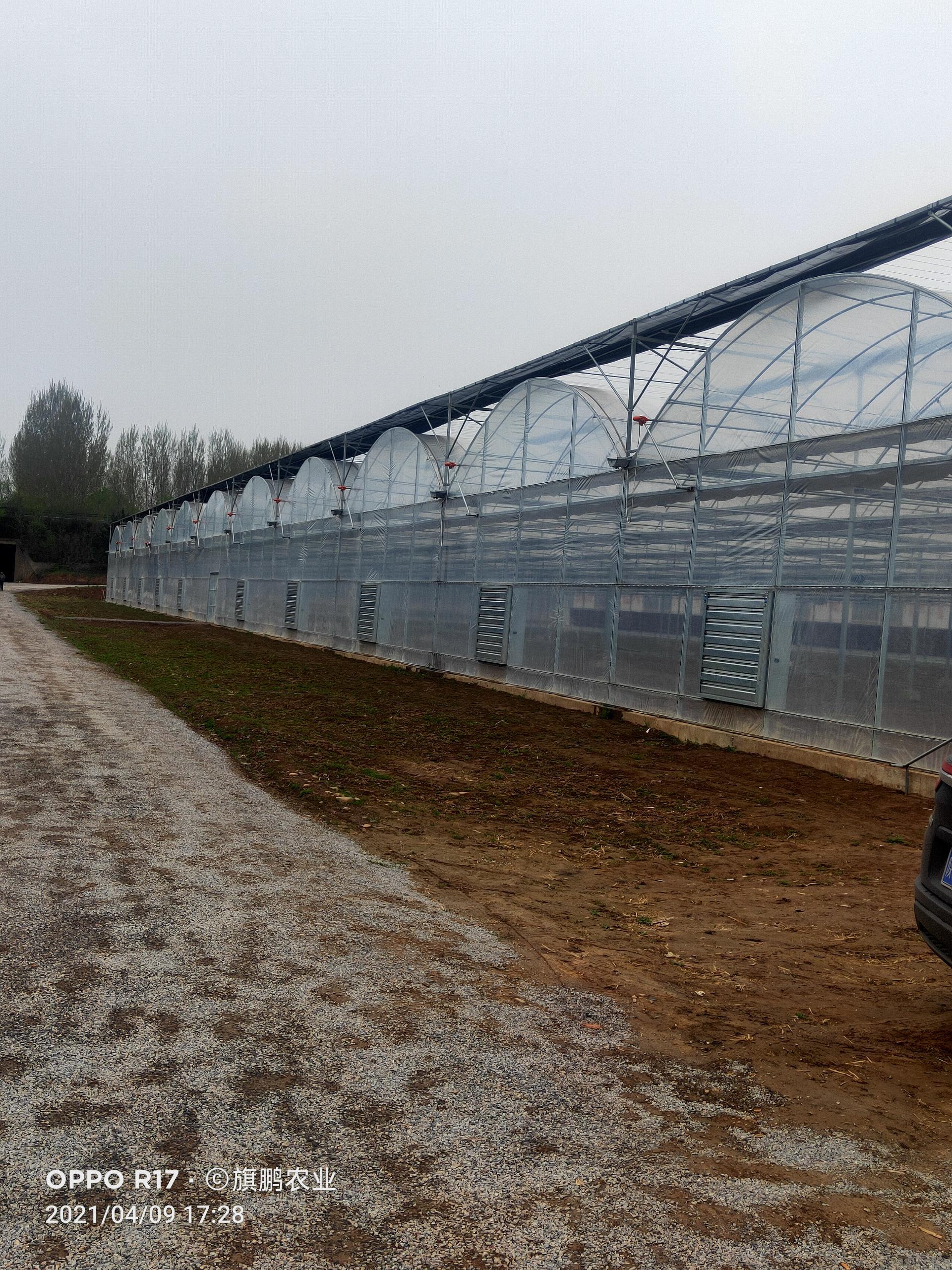 智能温室大棚 玻璃温室设计承建 温室大棚 蔬菜花卉温室大棚