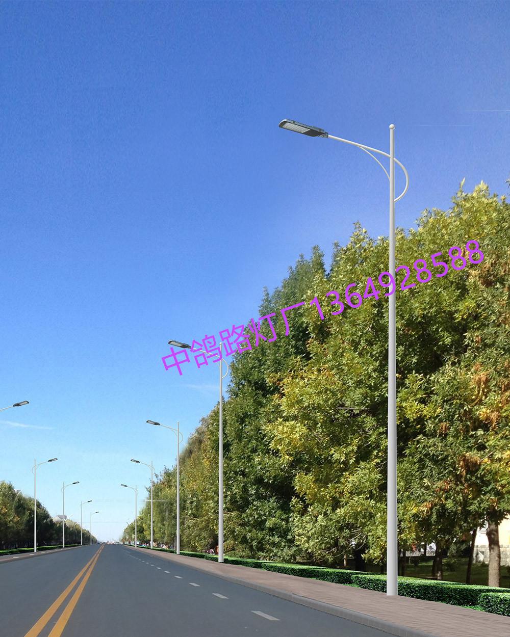 太阳能灯led路灯 厂家 直销 农村户外照明 工程竞标 工厂直销一带一路供应商!